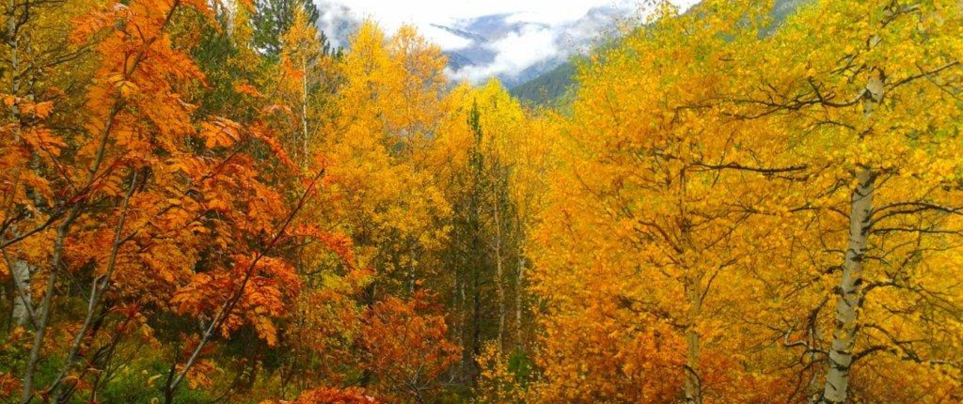 La tardor a Andorra