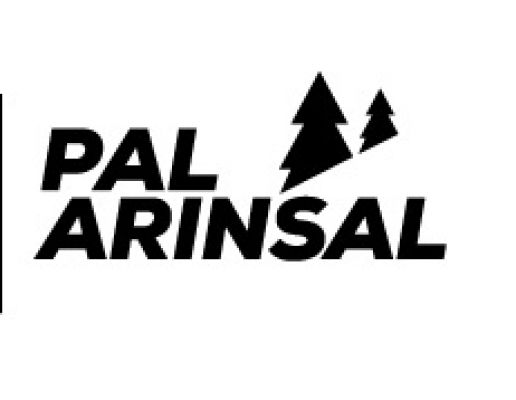 5 days ski pass PAL-ARINSAL